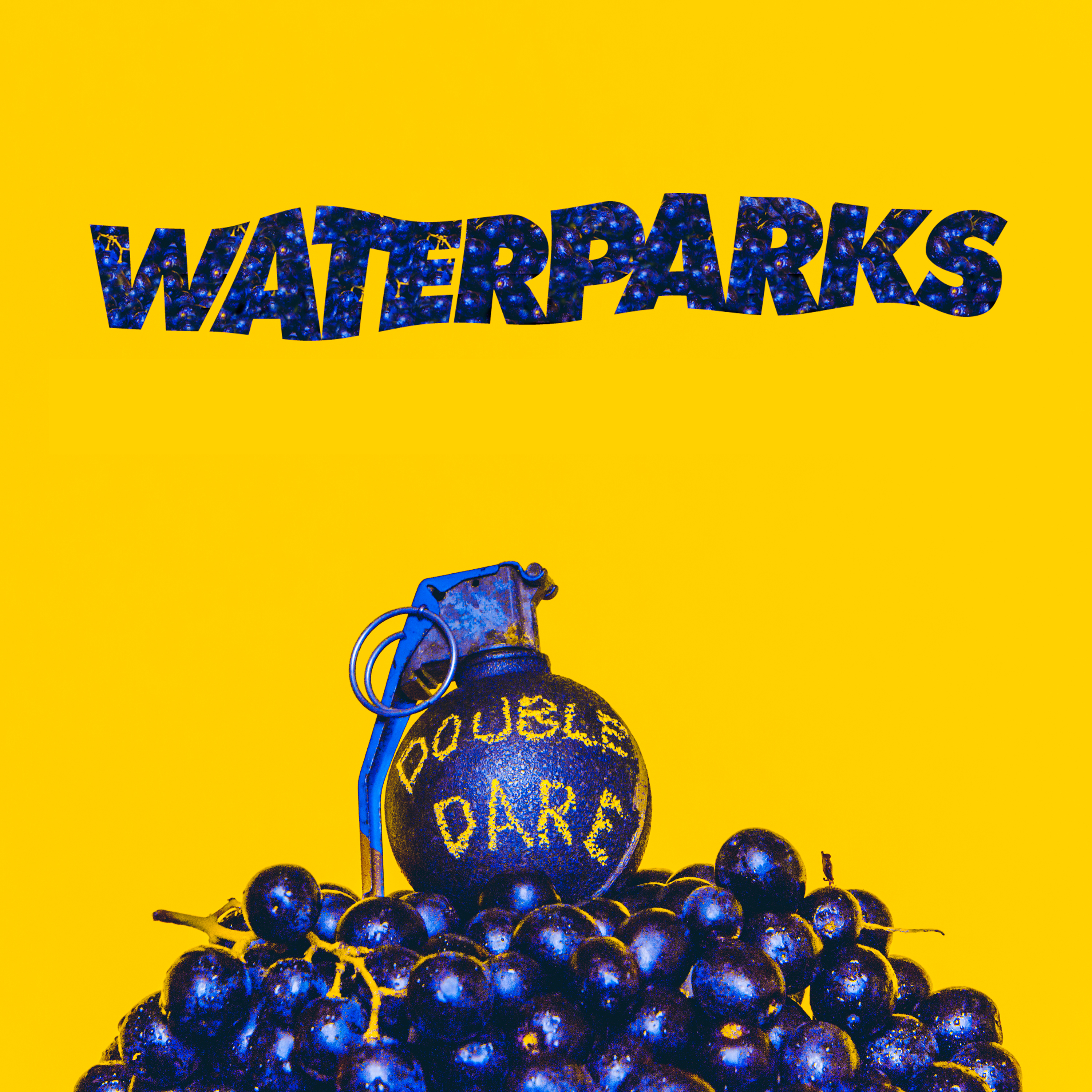 Image result for double dare waterparks